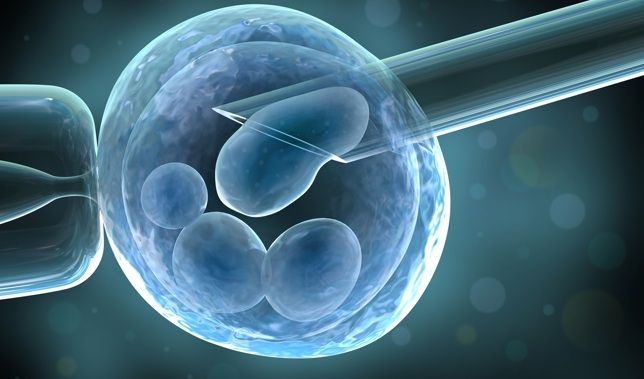 stem cell reasearch and its contraversy The stem cell debates: lessons for science and politics  uses exists for adult  stem cells, and their extraction and use generates little if any controversy.